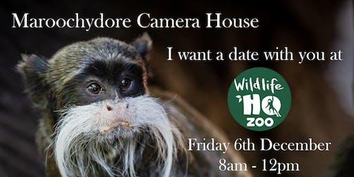 Wildlife Shoot -  Wildlife HQ Zoo - Big Pineapple