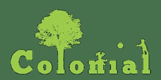 Colonial Nursery School Art Gala 2020
