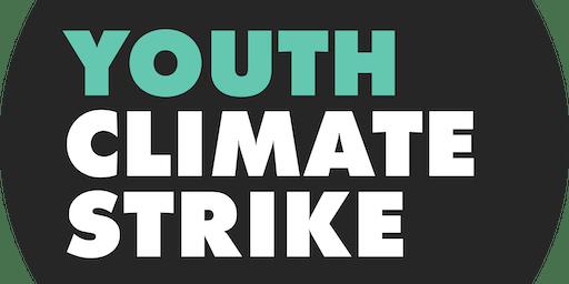 Climate Strike Organizing