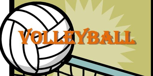 Volleyball Beach Party