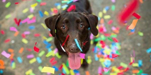 BYOD San Antonio Dog Pawty at Phil Hardberger Park