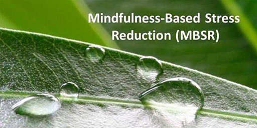 Mindfulness-Based Stress Reduction  -  8 Sessions