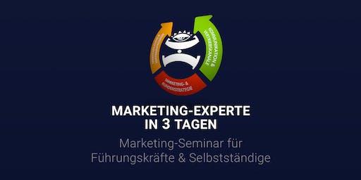 MARKETING-EXPERTE IN 3 TAGEN |Seminar um teures Marketing zu vermeiden