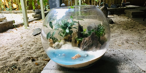 Beach terrarium workshop