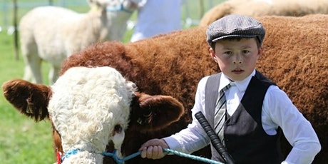 Co Louth Agricultural Show tickets
