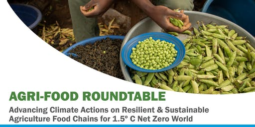 Advancing Climate Actions on Resilient and Sustainable Agri-Food Chains