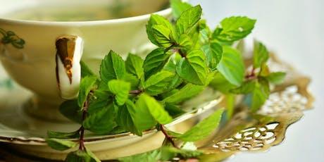 Herbes médicinales pour l'hiver (PLATEAU) tickets