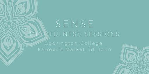 Mindfulness Sessions (12pm)