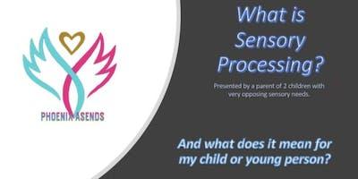 Sensory Processing information session.