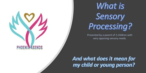 Sensory Processing information session.