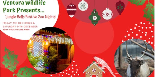Jungle Bells Festive Evenings at Ventura Wildlife Park