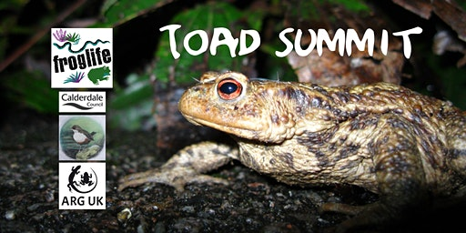 West Yorkshire Toad Summit
