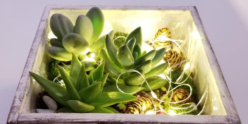 Ugly's Pub & Grill - Playful Fairy Lights and Succulents in Wooden Planter