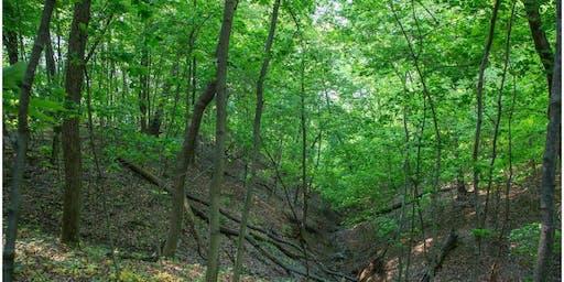 2020 Tour of Dayton Bluffs Preserve, Ottawa