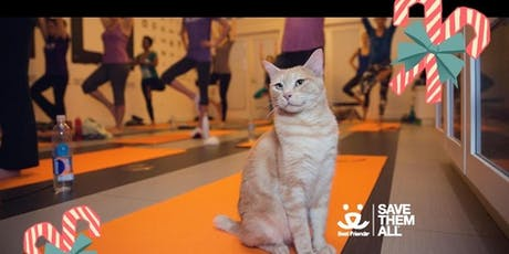 ME-OM: Yoga with Adoptable Cats | Holiday 2019 Edition tickets