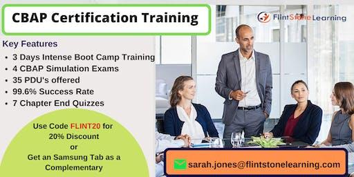 CBAP Certification Classroom Training in Appleton, ME