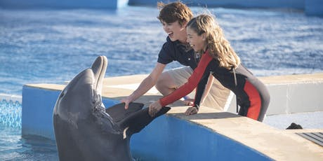 Bernie the Dolphin 2 Film Premiere tickets