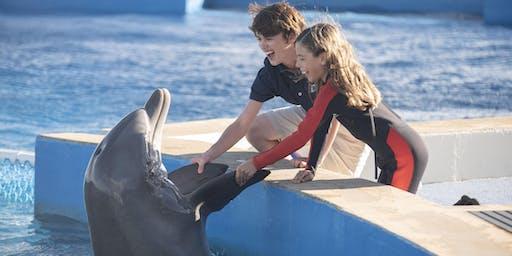 Bernie the Dolphin 2 Film Premiere
