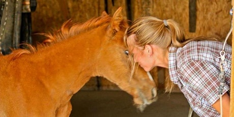 Connection and Healing Through Horses tickets