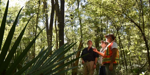 POSTPONED DUE TO HIGH WATER: Audubon South Carolina Bird-Friendly Forestry Bottomland Hardwoods Workshop