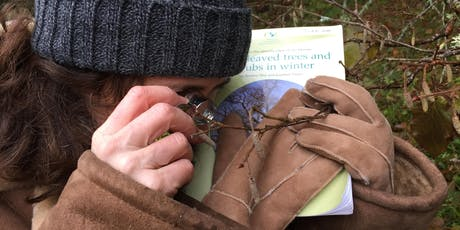 Winter Tree Identification Workshop at The Ecology Center Fife tickets