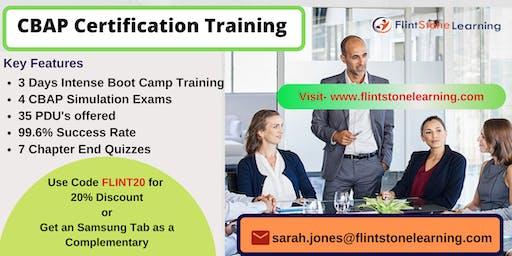 CBAP Certification Classroom Training in Avery, CA