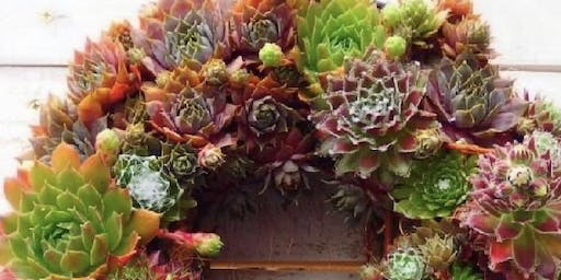 Make it & Take it: Living Sedum Wreath