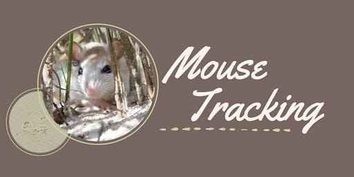 Anastasia Island Beach Mouse Tracking
