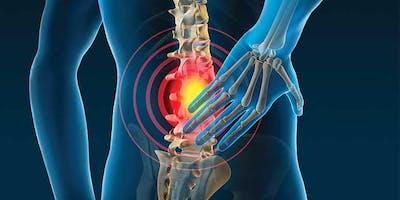 Low Back Pain Workshop