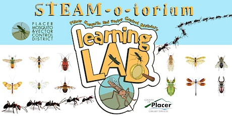 STEAM-o-torium: Placer Mosquito Learning Lab at the Rocklin Library tickets
