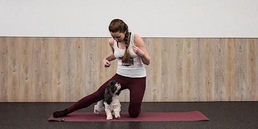 Yoga with your Dog (6-weeks)