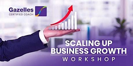 Scaling Up Workshop - Rockefeller Habits Business Growth Workshop tickets