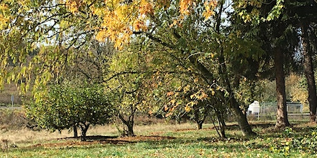 Winter Orchard Care Series: Curtin Spring Community Orchard tickets