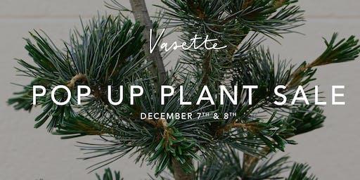 Pop-up Plant Sale!
