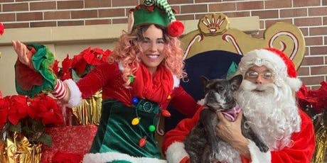Bay Street's Holiday Hounds Event Offers Fun For Pets tickets