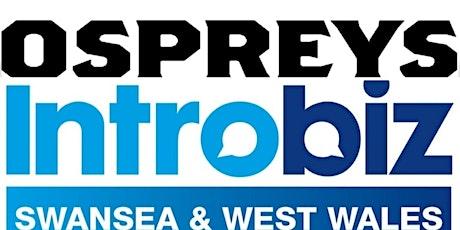 Ospreys Rugby Introbiz Swansea & West Wales Busine tickets