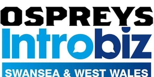 Ospreys Rugby Introbiz Swansea & West Wales Busine