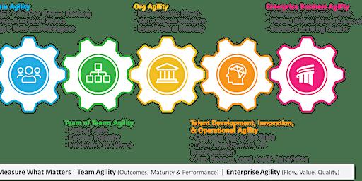 Enterprise Business Agility Strategist Workshop