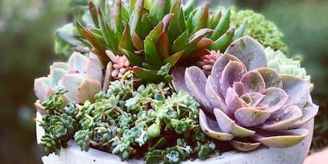 2020 2 designs succulent bowl workshop tickets