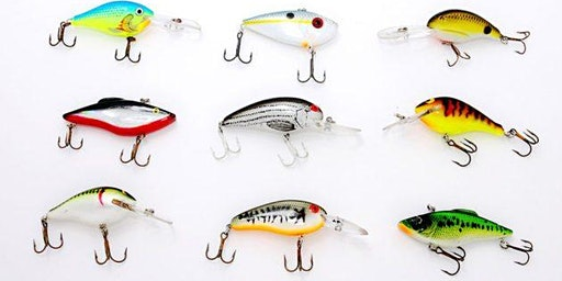 Freshwater Fishing 101: Lures