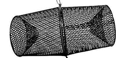 Freshwater Fishing 101: Nets & Traps