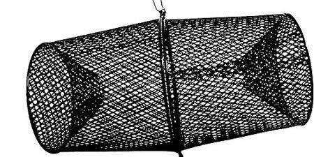 Freshwater Fishing 101: Nets & Traps