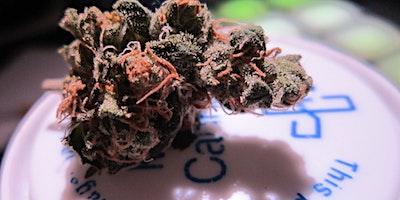 Illinois Marijuana Dispensary Training - Chicago area - February 8th
