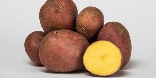 Al Mercato prepariamo gli gnocchi con le patate di Tolé!