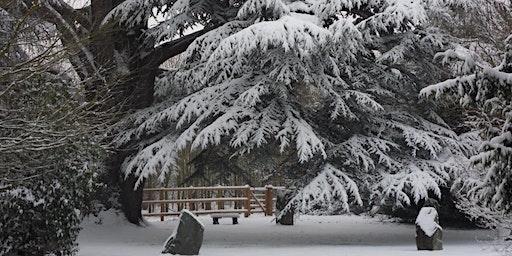 Winter Solstice at Mangreen, Sunday 22nd December 7pm