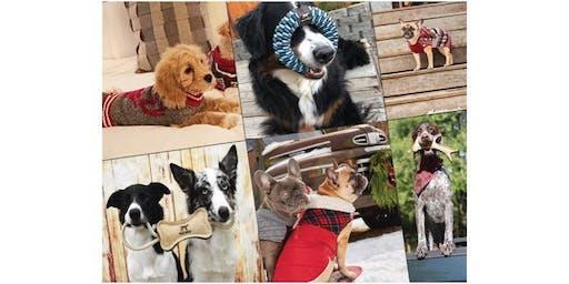 """Happy Paw-lidays Dog Contest"" at Dillard's!"