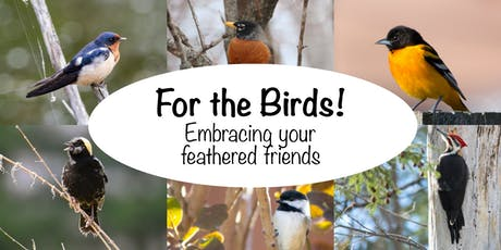For the Birds! tickets