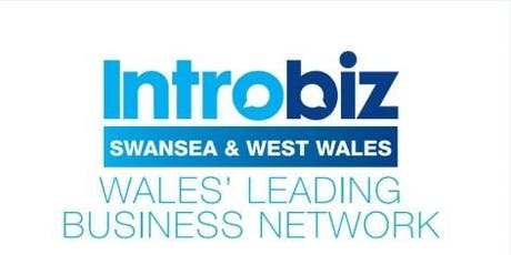 Introbiz Swansea & West Wales @Meadowhouse Holiday tickets