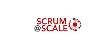 Scrum@Scale Coaching - Deutschsprachig - 16 January tickets