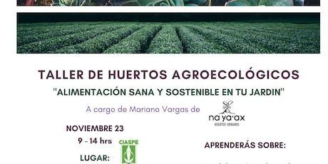 Taller: HUERTOS AGROECOLOGICOS entradas